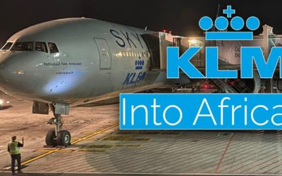 KLM Business Class To Cape Town